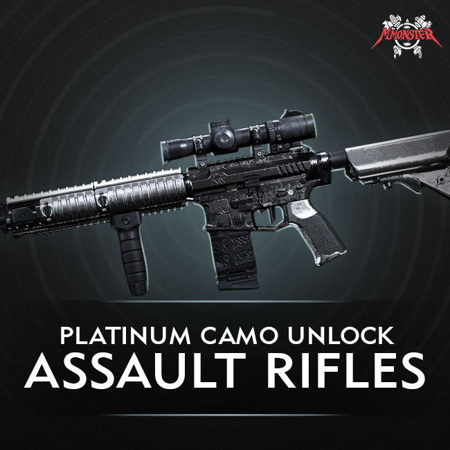 CoD MW Assault Rifle Platinum Camo Unlock Boost [id:24582]