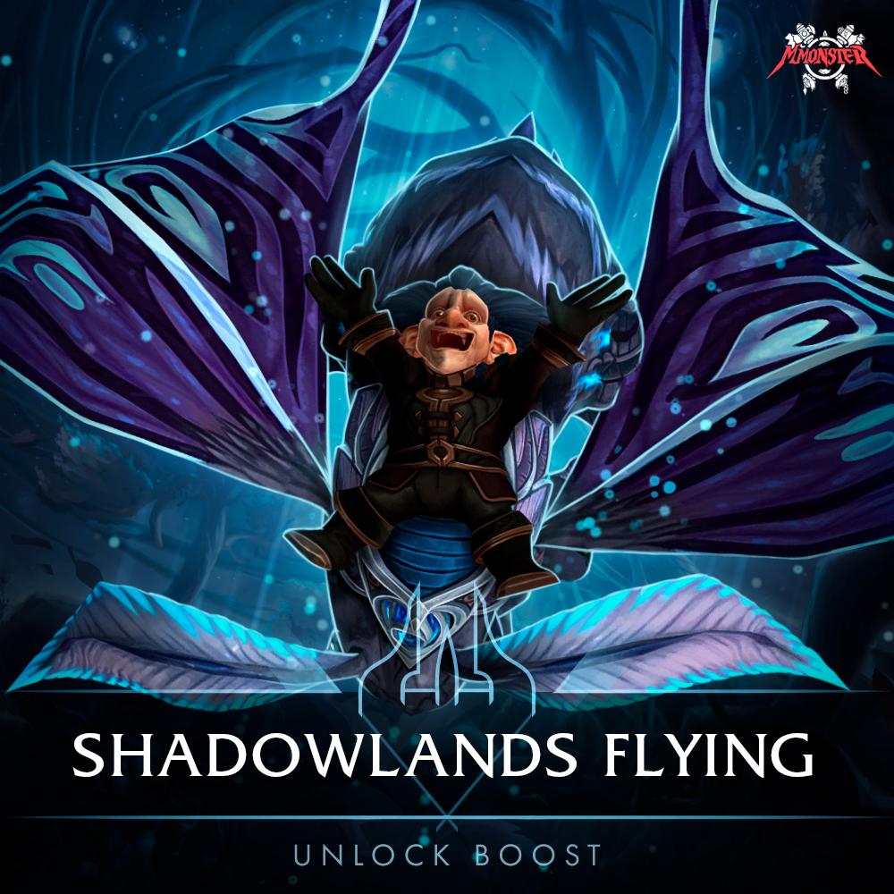 Shadowlands Flying Unlock Boost [id:58301]